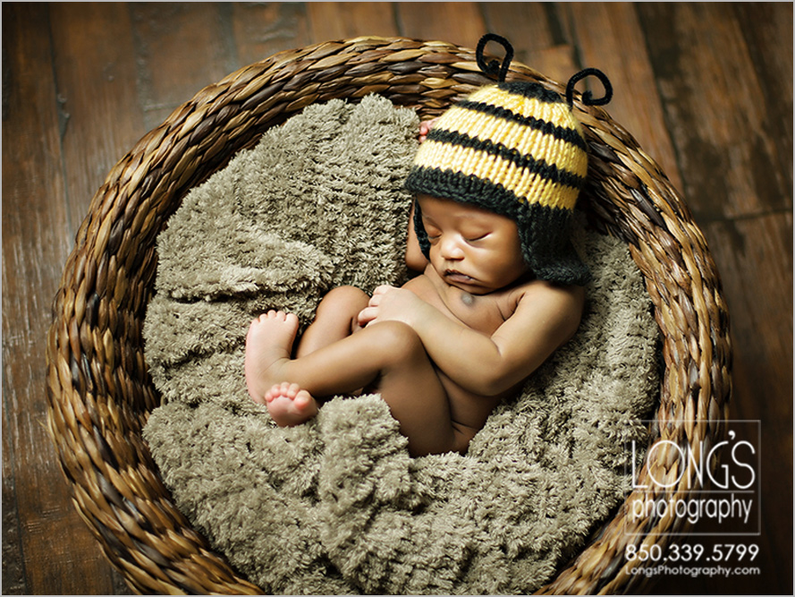 newborn photos in tallahassee