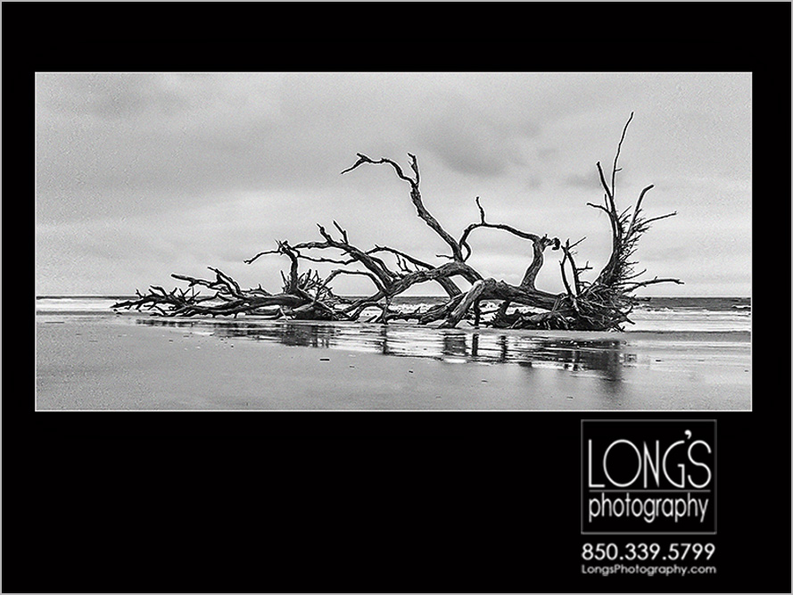 Award winning Jekyll island photograph