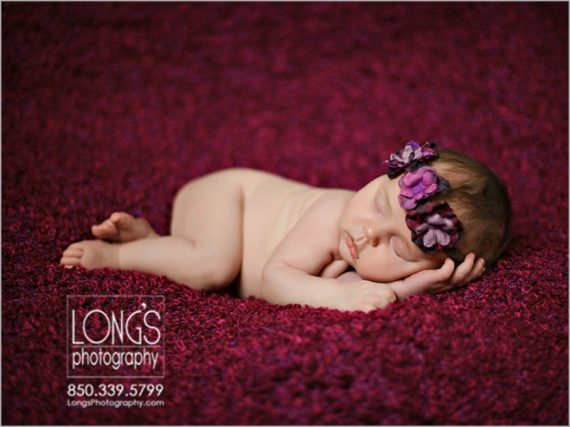 Tallahassee newborn baby photos