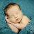 Newborn photography Tallahassee
